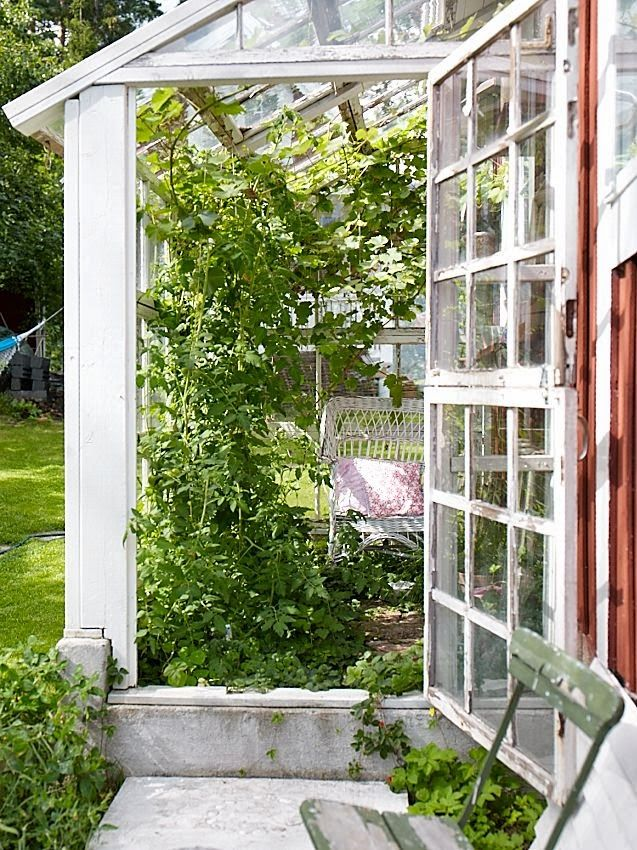 Sanna & Sania: Drömmen om ett växthus