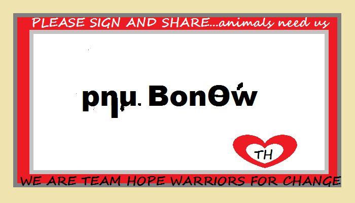 "https://www.causes.com/campaigns/13834-be-a-voice-for-the-voiceless  Τα ζώα στη Βόρεια Ιρλανδία χρειάζεται τη βοήθειά σας. Τα σκυλιά και οι γάτες μπορούν να σφαγούν χωρίς διώξεις. Μπορείτε να κάνετε τη διαφορά στη ζωή τους με την υπογραφή και την ανταλλαγή αυτή η αναφορά, η οποία λήγει στις 31 Μαρτίου st.2014. Είναι μέρος της λύσης και η νίκη. ""ΠΟΛΕΜΙΣΤΈΣ ΓΙΑ αλλαγή~πετρώματα του πλανήτη"""