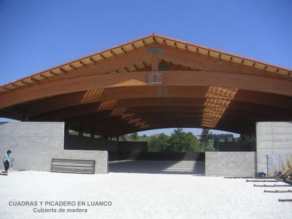 GRANDES ESTRUCTURAS DE MADERA: CUBIERTAS Y PUENTES,