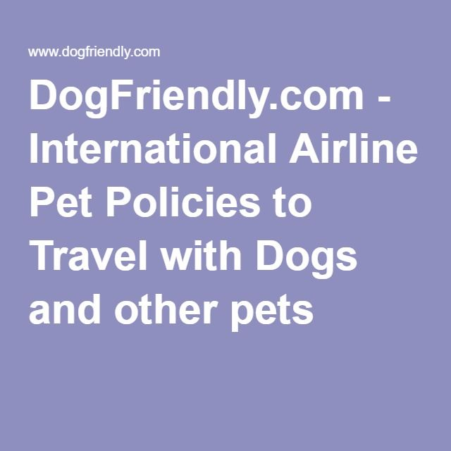 DogFriendly.com - International Airline Pet Policies to Travel with Dogs and other pets