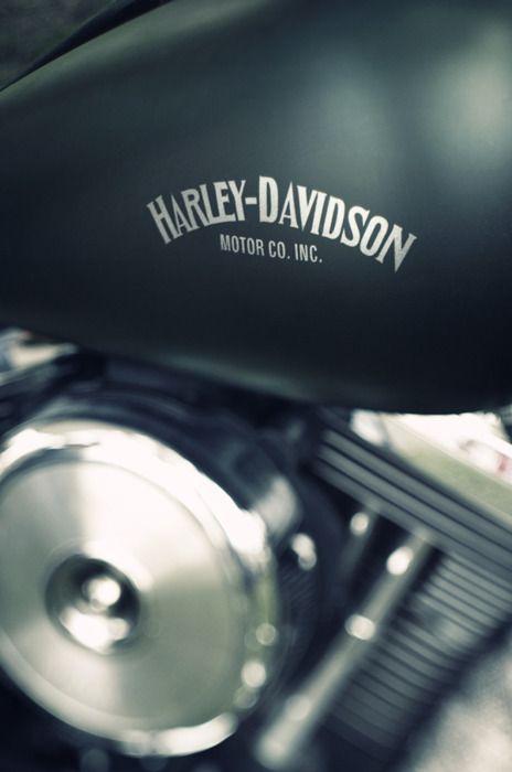 Harley: Common Motorcycles, Cars, H D, Harley Davidson Motorcycles, Motorcycles Myth, Motorcycles Motorbikes, Harleydavidson, Flats Black, Biker Men