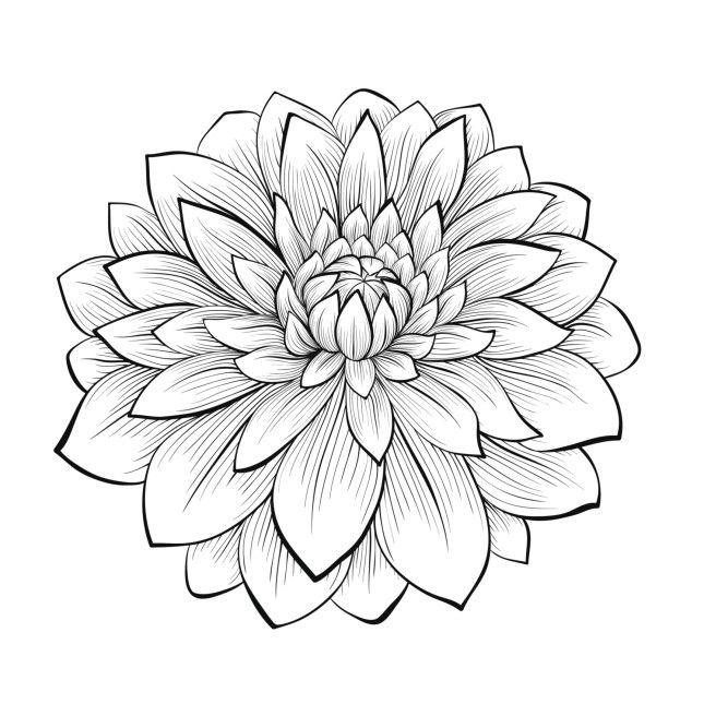 Oltre 25 fantastiche idee su disegnare fiori su pinterest for Quadri fiori stilizzati