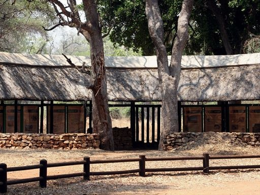 Additionally, two and three-bed bungalows are made an option for guests looking for solid walls, with en-suite bathrooms, air conditioning, and communal braai (barbecue) facilities.