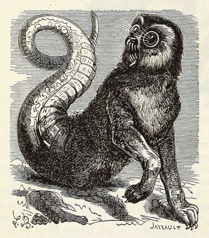 Amon, from the 1863 edition of Collin de Plancy's Dictionnaire infernal Amon demon