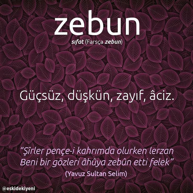 """zebun. sıfat (Farsça zebun). Güçsüz, düşkün, zayıf, âciz. """"Şîrler pençe-i kahrımda olurken lerzan Beni bir gözleri âhûya zebun etti felek"""" (Yavuz Sultan Selim) (Kaynak: Instagram - eskidekiyeni) #türkçe #türkçedili #bilgi #kelime #kelimeler #anlam #özet #kökeni #güzel #güzelkelimeler #bazıkelimelerçokgüzel #lügat #doğrutürkçe #türkçesivar"""