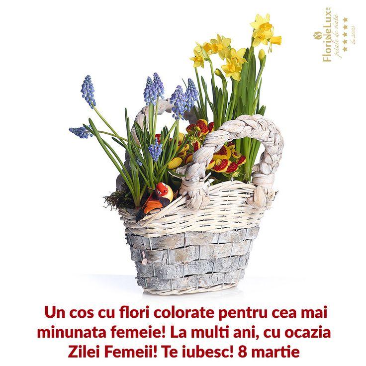 la multi ani! 8 martie, felicitari virtuale 8 martie --> https://www.floridelux.ro/flori-pentru-ocazii/flori-cadouri-sarbatori/flori-8-martie/