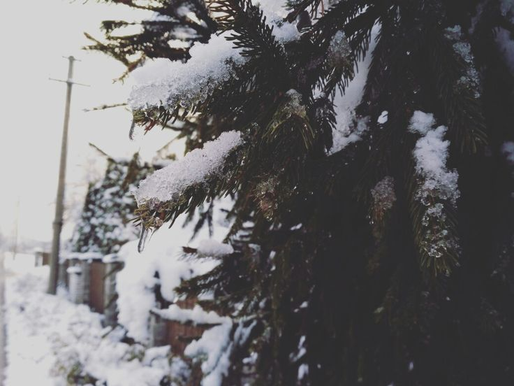 Winter time❄️⛄