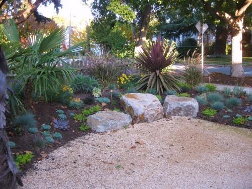 low maintenance and yearround beautiful garden