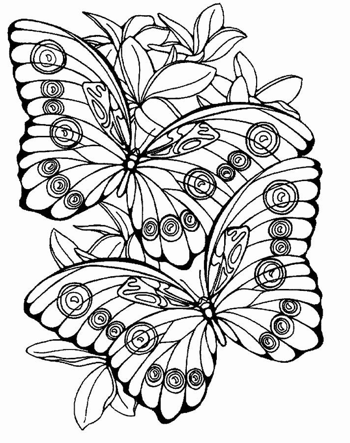 Large Print Coloring Pages Best Of Free Print Coloring Pages For Adults Butterfly Coloring Page Coloring Pages Flower Coloring Pages