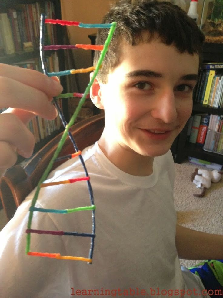 We discovered a fun hands-on science activity using wikki stix to construct DNA models. All ages have fun with this hands-on project.