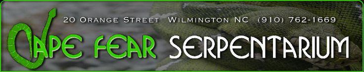 cape fear serpentarium, wilmington travel, wilmington events, downtown wilmington, wilmington shopping, wilmington bars, wilmington map, wil...