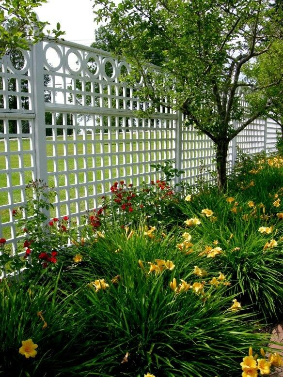 Love Everything About This Fence, Tall Enough To Keep Harry In, Great  Hardscape!