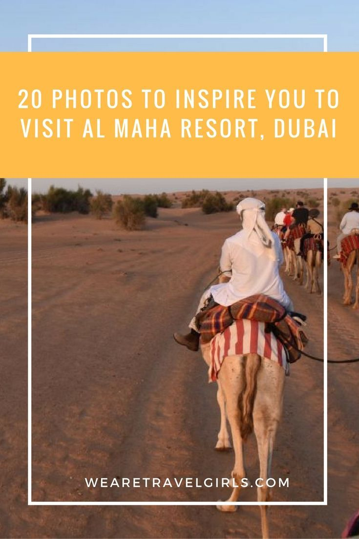20 PHOTOS TO INSPIRE YOU TO VISIT AL MAHA RESORT, DUBAI! Located deep within an enchanting dune landscape in the Dubai Desert Conservation Reserve, just an hour outside of the bustling city of Dubai, you'll find the quiet desert escape of Al Maha Resort & Spa. You'll drive through miles of nothing but sand dunes as far as the eye can see, and then you will reach the gates of Al Maha, a 5-star resort nestled in a magical palm oasis, worlds away from everything you are use to. By Vanessa River