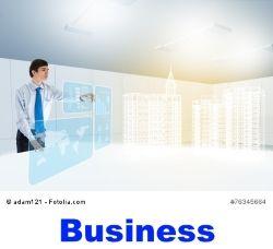 Projektoren für den Einsatz im Business Bereich ...