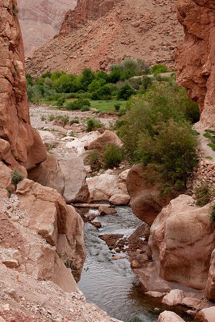 """Dadès Valley (""""Valley of the thousand kasbahs"""" & """"Valley of the roses"""") & Skoura"""