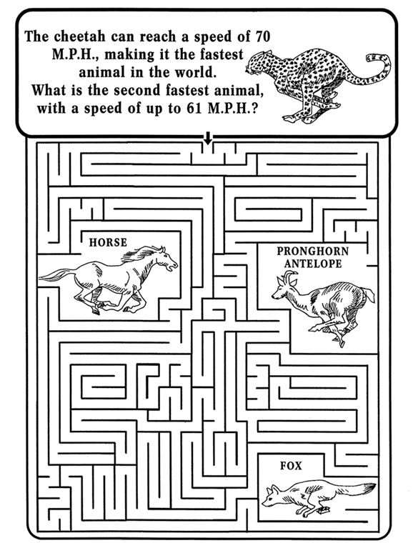 Nature Maze Printable
