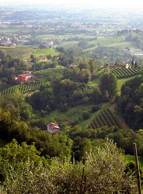 On the way to Montaner Treviso - Veneto, Italy