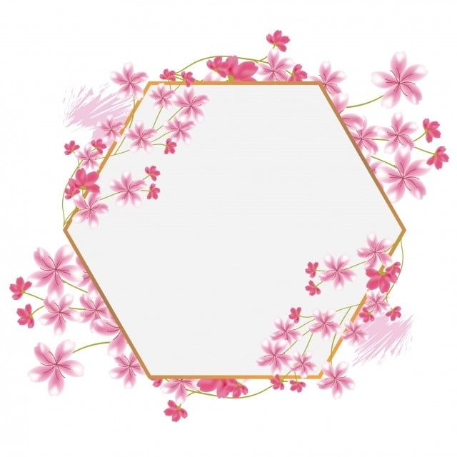 Sakura Cherry Blossom Flower Hexagon Frame Border Cherry Blossom Design Frame Png And Vector With Transparent Background For Free Download Flower Drawing Cherry Blossom Drawing Cherry Blossom Flowers