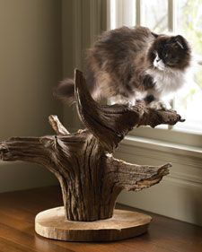 Beautiful scratching post and perch for cats - so much better than those ugly carpet poles!