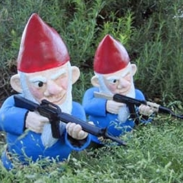Combat Garden Gnomes: 1000+ Images About Gnomes And Fairy Gardens On Pinterest