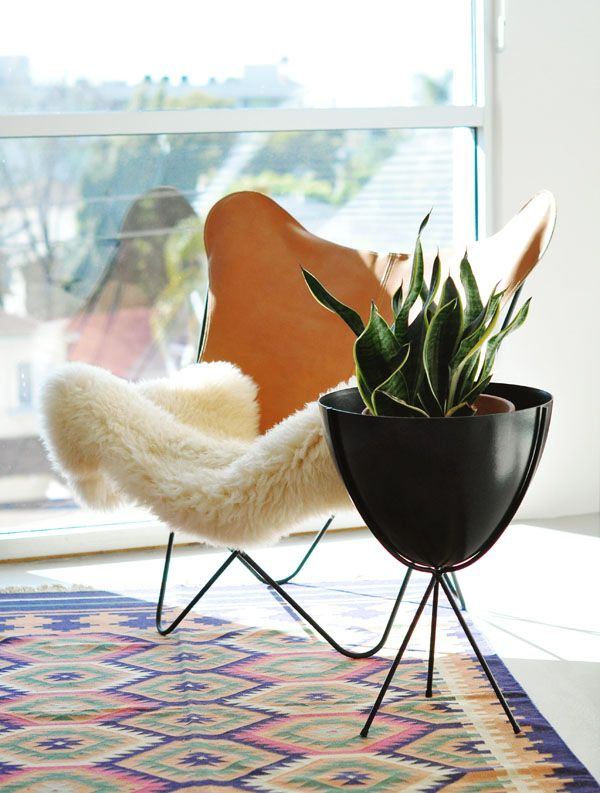 bullet planterLiving Rooms, Leather Sling Chairs, Decor Ideas, Plants Stands, Chairs Planters, Snakes Plants, Interiors Design, Butterflies Chairs, Sheepskin Rugs