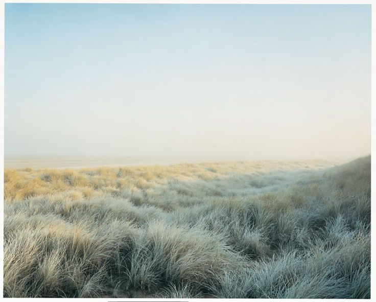 Norfolk dunes, Harry Cory Wright