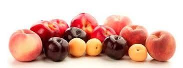Summer stoned fruit. #seasonsforgrowth