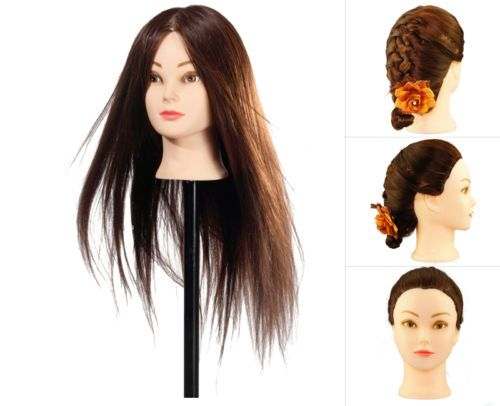 90% Hairdressing Real Hair Training Head Mannequin head For College Use + CLAMP | eBay