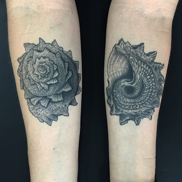 Conch shell tattoo google search seashell tattoo for Tattoo shops cape coral