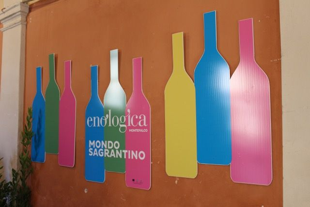 """Enologica36 in Review""- Tabarrini Montefalco  #blog #wine #Tabarrini #harvest #Italy"