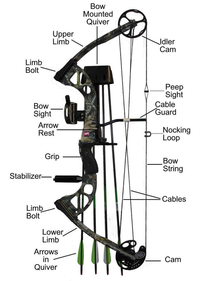 25  best ideas about compound bow parts on pinterest
