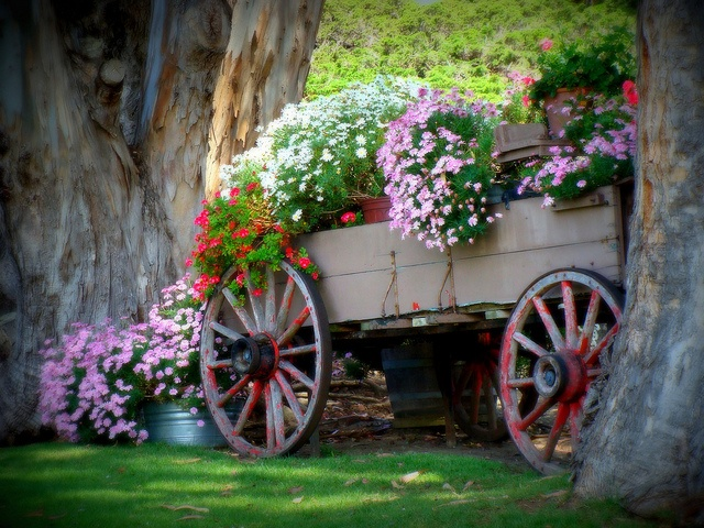 Wagon Wheel Flower Basket Clint Eastwoodu0027s Mission Ranch In Carmel,  California. Such A Lover Of Carts Or Wagons.