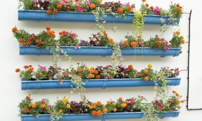 canaletas con flores