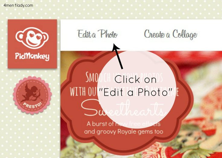 create cards with pic monkey