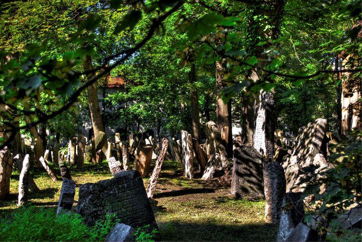 https://flic.kr/p/bjA9Bm | Repubblica Ceca, Praga, cimitero ebraico | View On Black - Fluidr старое еврейское кладбище