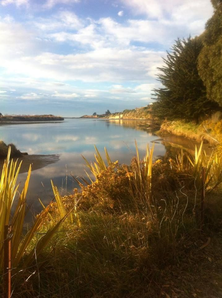 Kakanui River, North Otago, New Zealand - taken on the walking/cycling track looking out to the river mouth. #visitkakanui  Check out our Facebook page for more insights into things to see and do in Kakanui: https://www.facebook.com/thebusstopkakanui