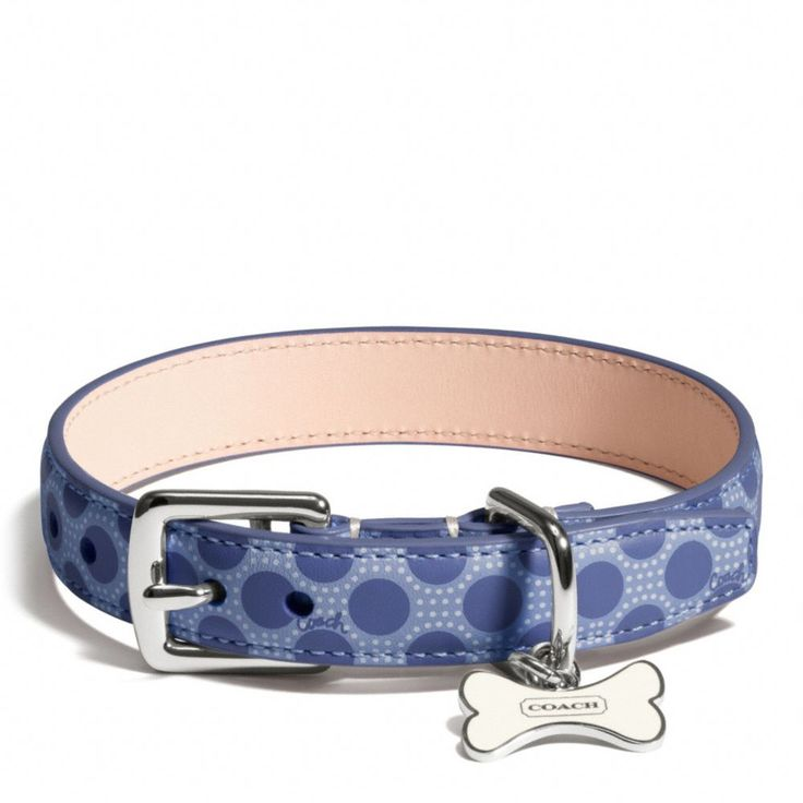 The Poppy Polka Dot Collar from Coach