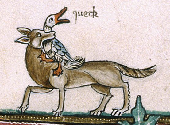 Gorleston Psalter - f. 190v:  detail of a marginal scene of a fox seizing a duck, with 'sound effects' added in a later hand, reading 'queck' [quack