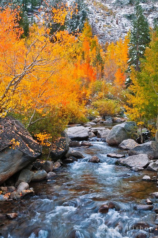 Bishop Creek, Inyo National Forest, Sierra Nevada Mountains, California; photo by Russ Bishop