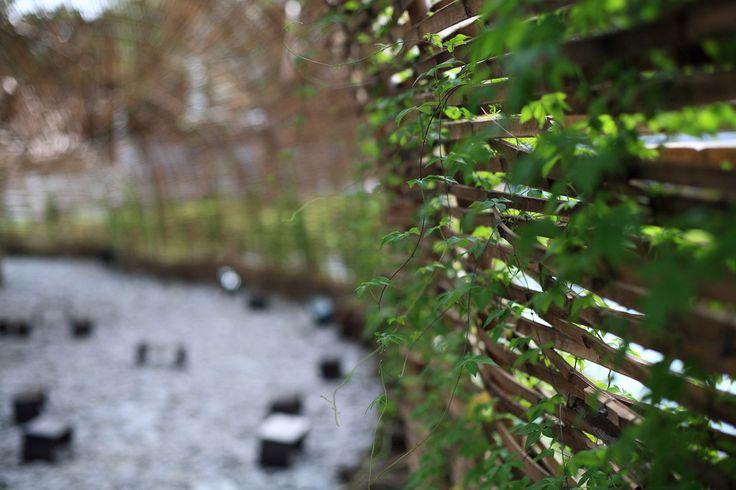cicada-in-taipei-by-marco-casagrande-001 « Landscape Architecture Works   Landezine