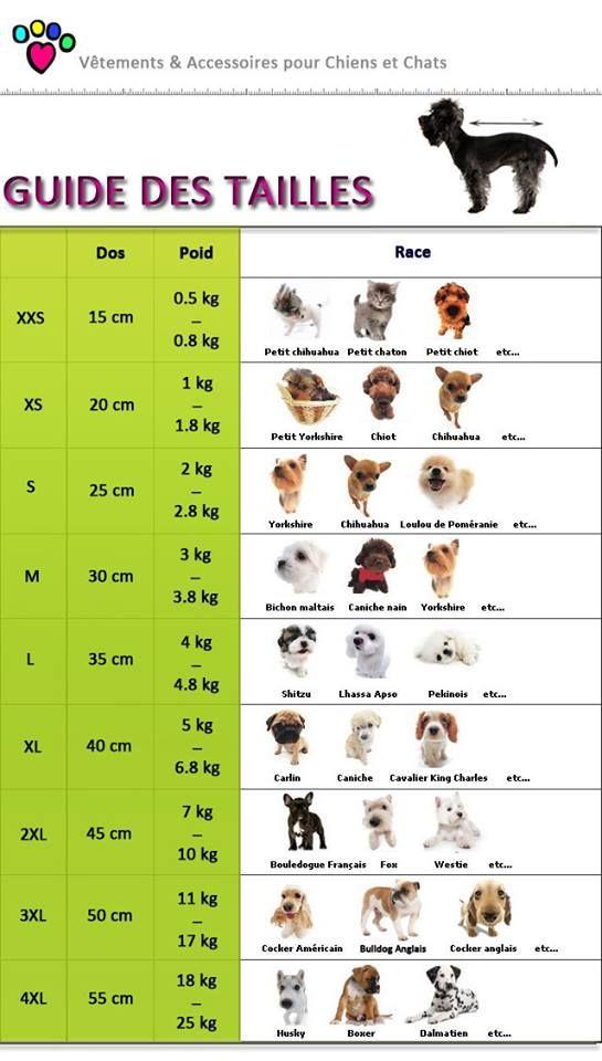 Taille de manteau pour chiens