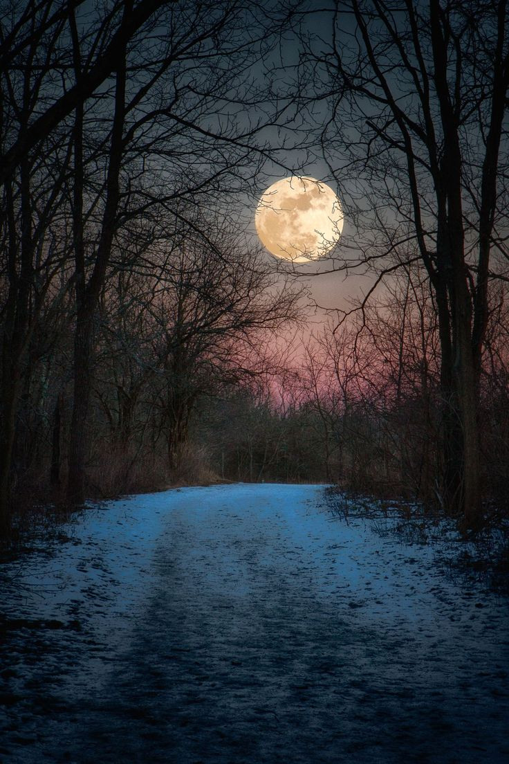 Full Wolf Moon rising over snow covered trail in Sugarcreek MetroPark near Dayton Ohio on January 23 2016