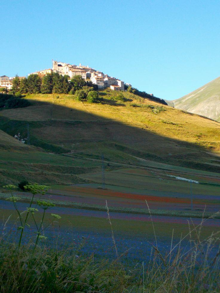 Castelluccio di Norcia Umbria - Italy