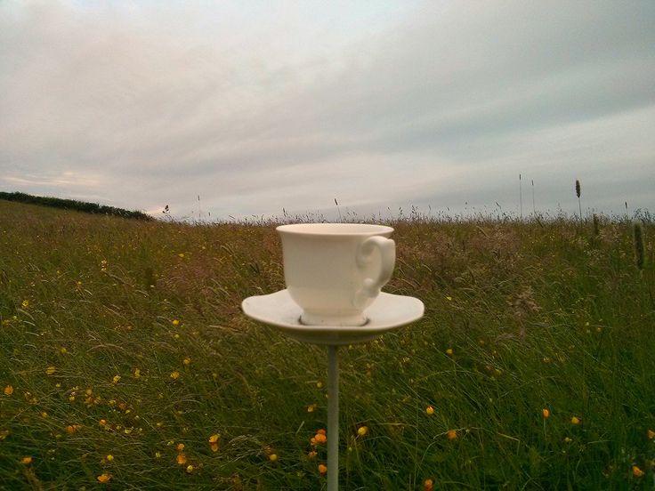 https://flic.kr/p/uZoLGU | Teacup on a Stick