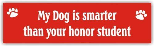 My dog is smarter than your honor student - magnetic bumper sticker
