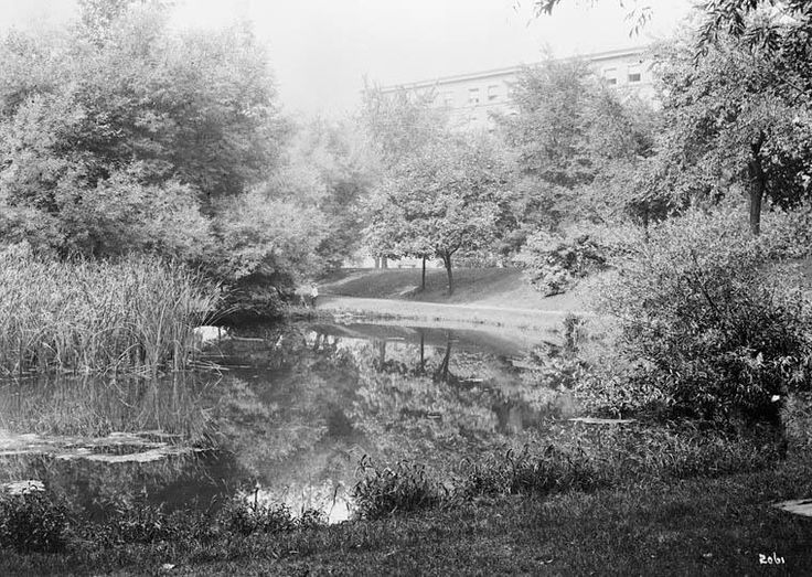 Majors' Hill Park used to be much different. For example, it used to have a big lake in it. Here is the lake circa 1910