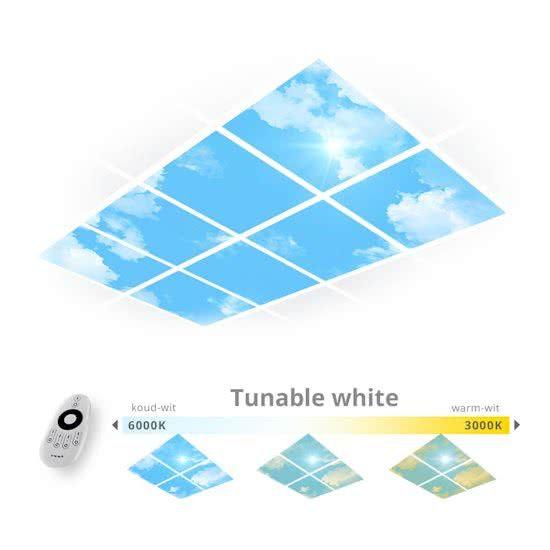 Haal je het daglicht binnen op kantoor en dim je eigen wit tinten (warm wit en koud wit). Met de handige remote contol stel je zelf de helderheid en kleurtemperatuur van de LEDverlichting in die past bij de sfeer die je wilt.  Altijd mooi weer en een prachtig uitzicht om een stimulerende werkplek te maken. Creëer de mogelijkheid om beter te presteren, alert en fit te blijven met de Easy Daylight Panels.  Systeemplafond:De panelen kunnen eenvoudig in het systeemplafond worden geïnstalleerd.