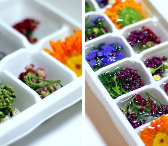 Flower Ice Cubes. Such a great idea!! Thank you, Amanda Amaru, for turning me onto this. <3