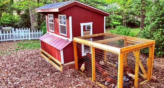 Medium Sized Chicken Coop | Hen House For Sale | Horizon Structures