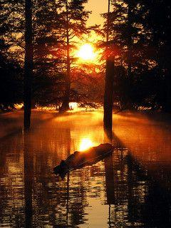Mississippi Morning - Sunrise at the Noxubee National Wildlife Refuge, near Starkville